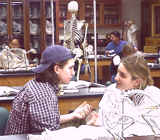 Dr. Ross\'s Comparative Anatomy Course at CBU