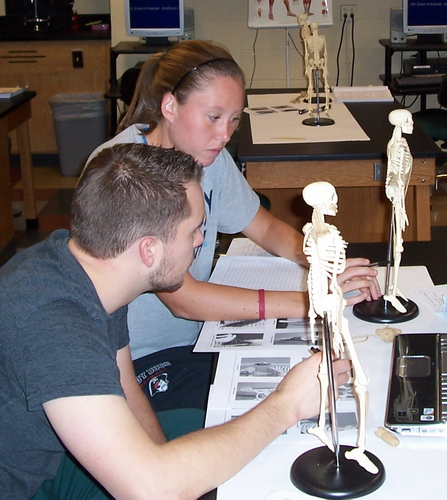 Dr. Ross's Biol 217 Anatomy and Physiology I at CBU