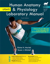 Marieb 10th ed. Update