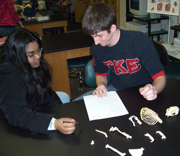 Dr Ross S Comparative Anatomy Course At Cbu