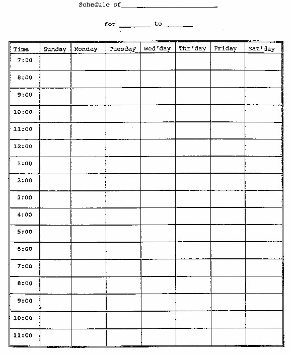 supplement schedule template