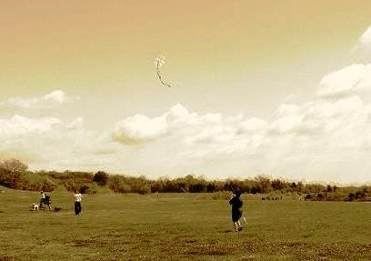 flying homemade kites