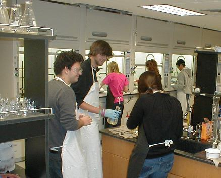 Students in the Organic Chemistry lab