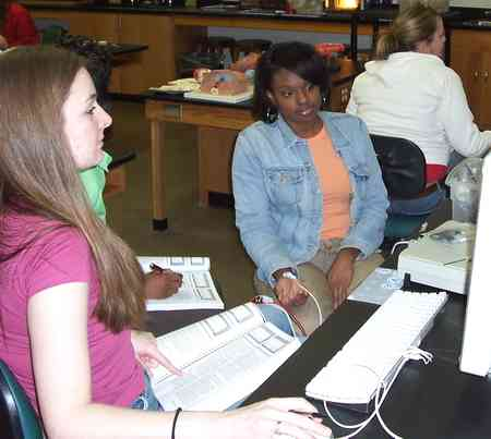 students working in Human Anatomy & Physiology I Lab