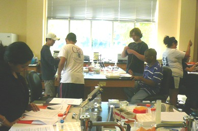 Students in the BIOL 415L Immunology lab